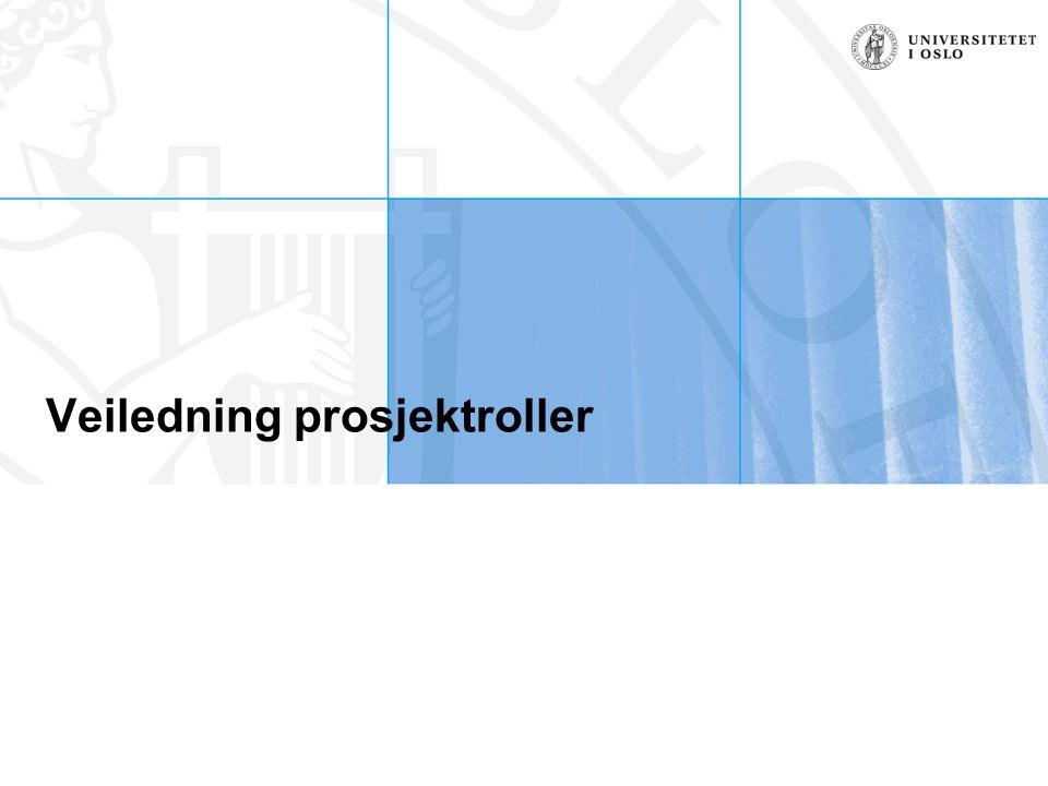 Veiledning prosjektroller