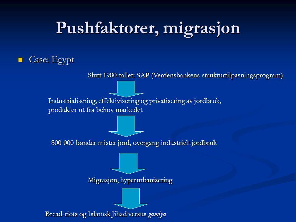 Pushfaktorer, migrasjon