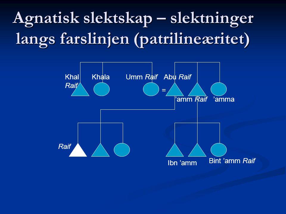 Agnatisk slektskap – slektninger langs farslinjen (patrilineæritet)