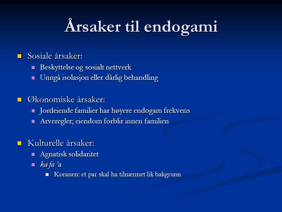 Årsaker til endogami Sosiale årsaker: Økonomiske årsaker: