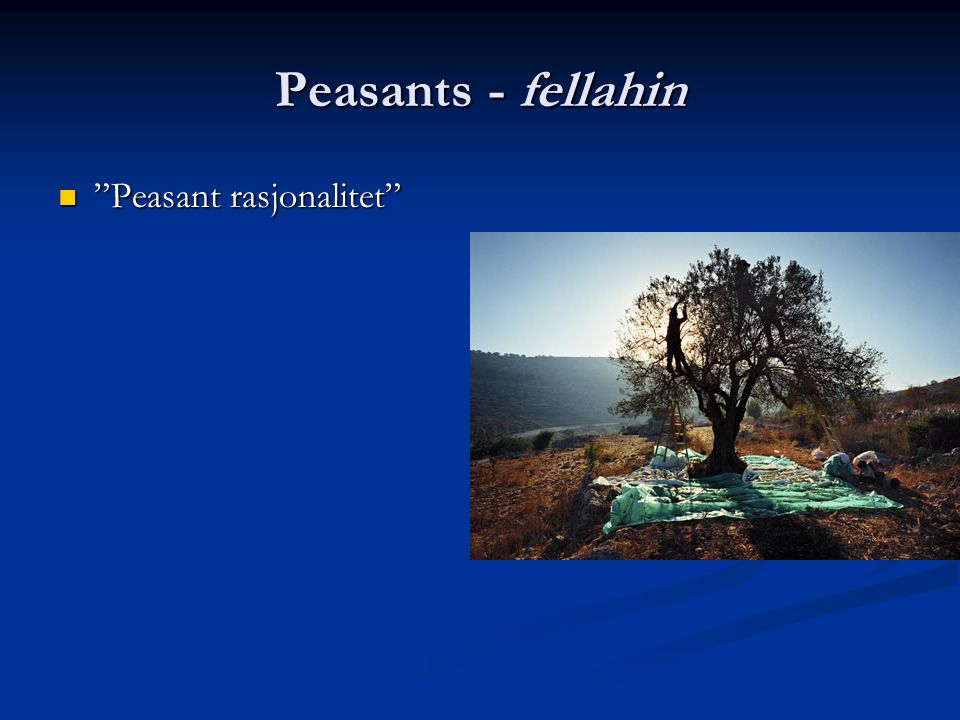 Peasants - fellahin Peasant rasjonalitet