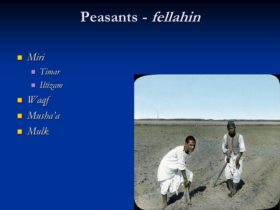 Peasants - fellahin Miri Timar Iltizam Waqf Musha'a Mulk