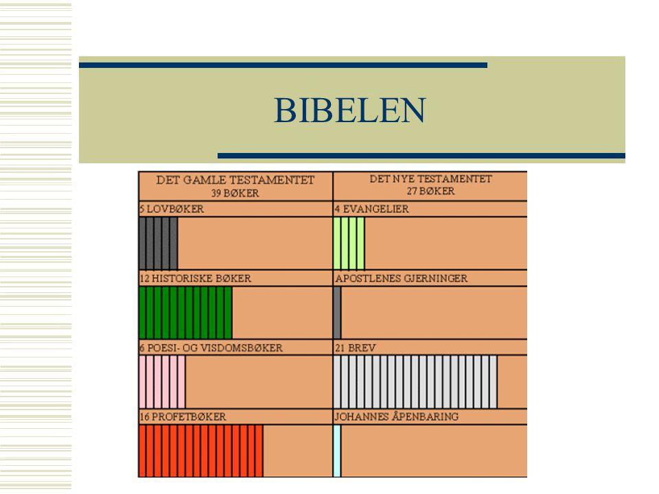 BIBELEN Lovbøker: de fem mosebøkene