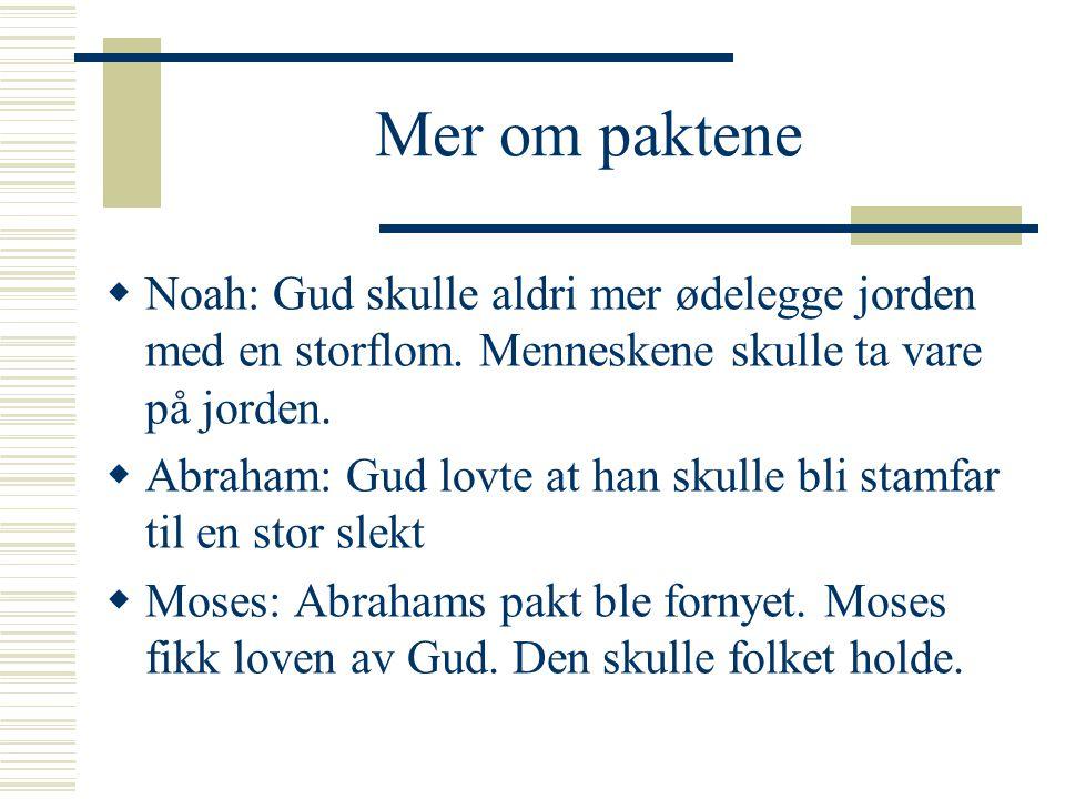 Mer om paktene Noah: Gud skulle aldri mer ødelegge jorden med en storflom. Menneskene skulle ta vare på jorden.