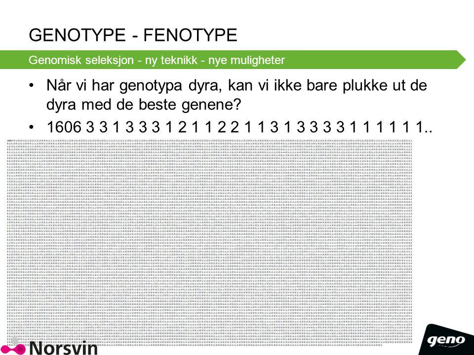 Genotype - Fenotype Genomisk seleksjon - ny teknikk - nye muligheter.