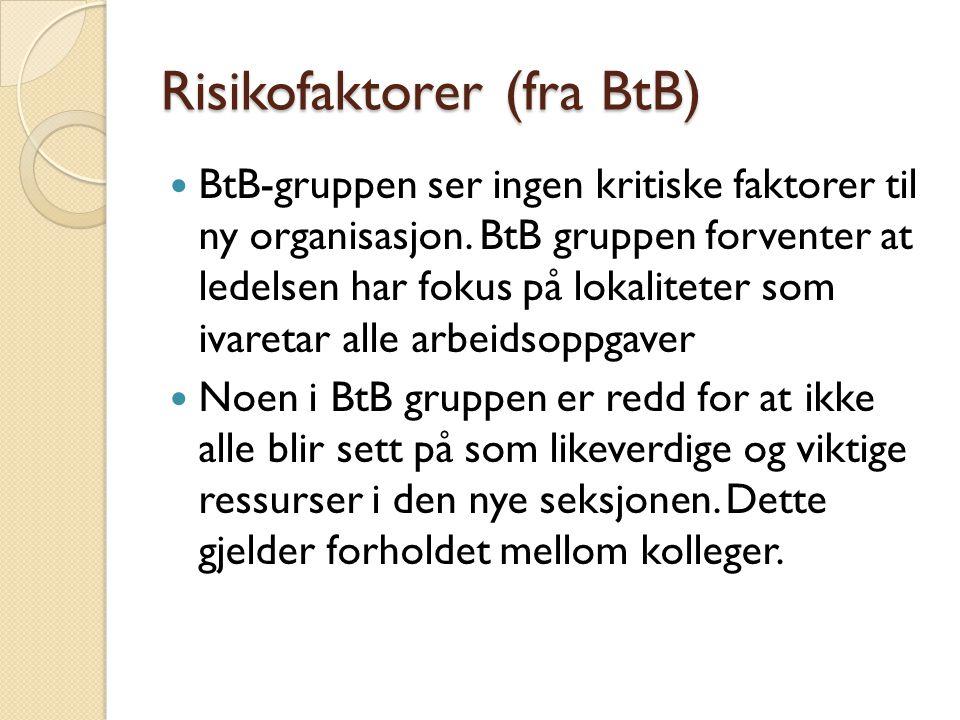 Risikofaktorer (fra BtB)