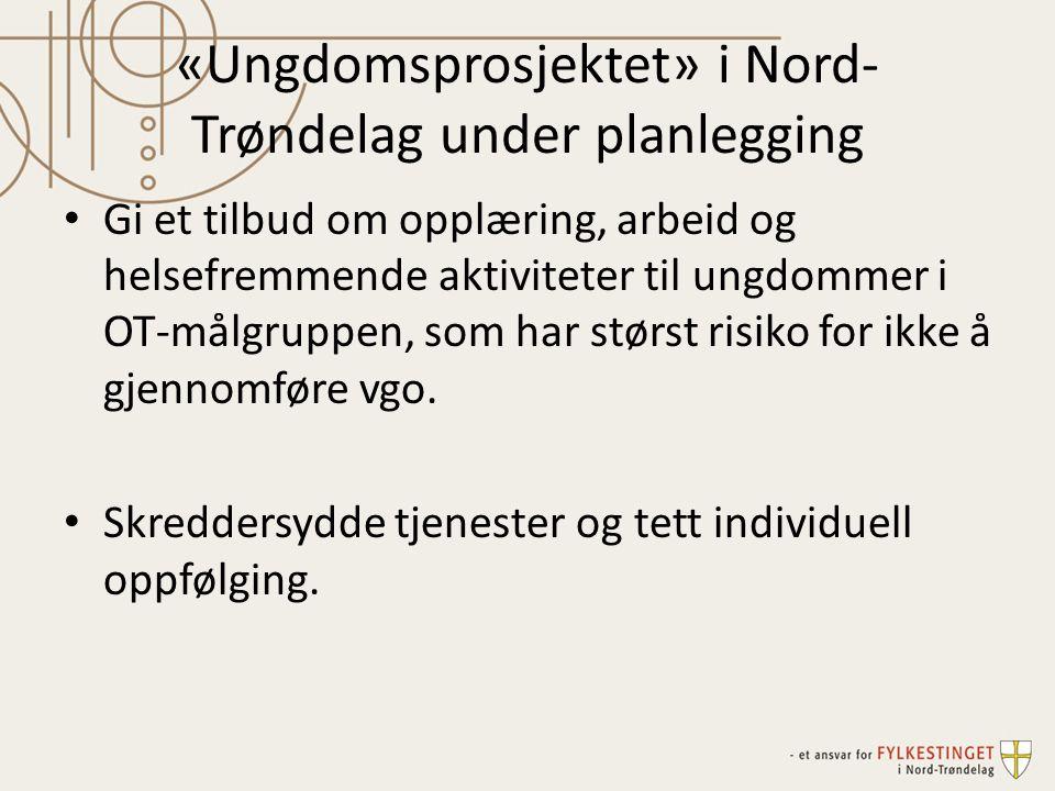 «Ungdomsprosjektet» i Nord-Trøndelag under planlegging