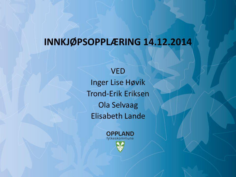 VED Inger Lise Høvik Trond-Erik Eriksen Ola Selvaag Elisabeth Lande