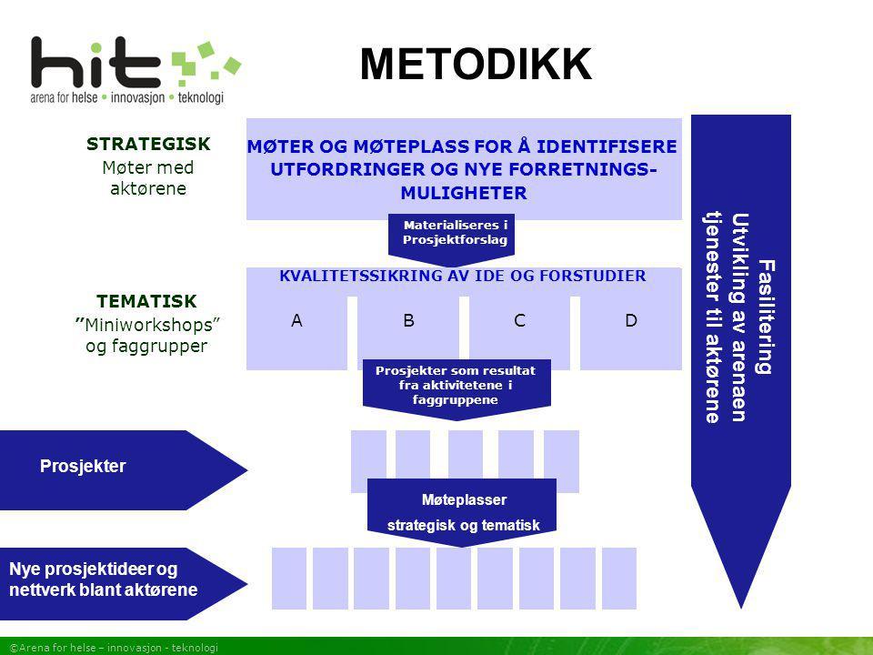 METODIKK Fasilitering Utvikling av arenaen tjenester til aktørene