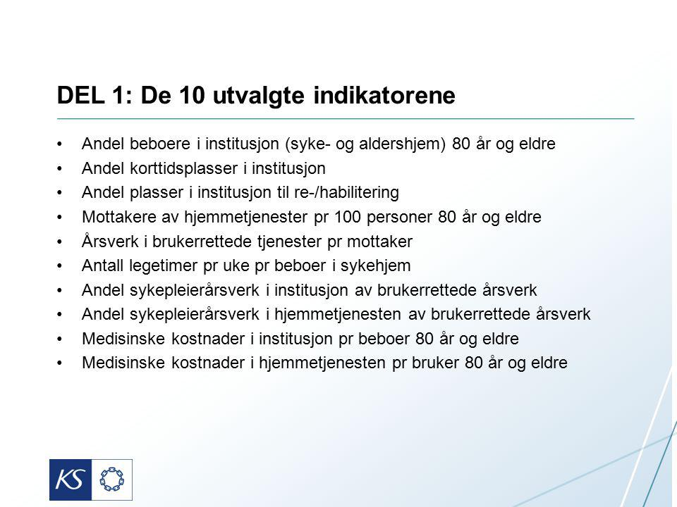 DEL 1: De 10 utvalgte indikatorene