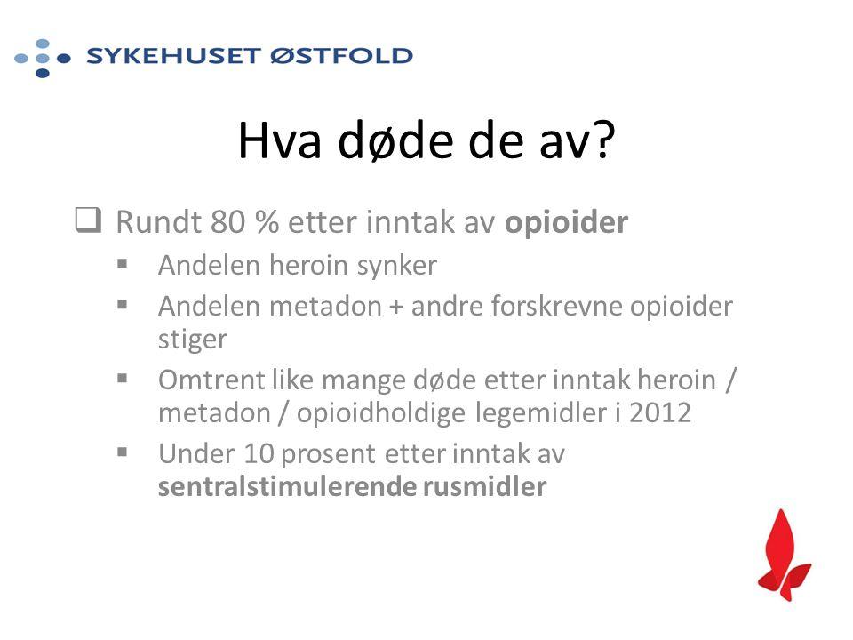 Hva døde de av Rundt 80 % etter inntak av opioider