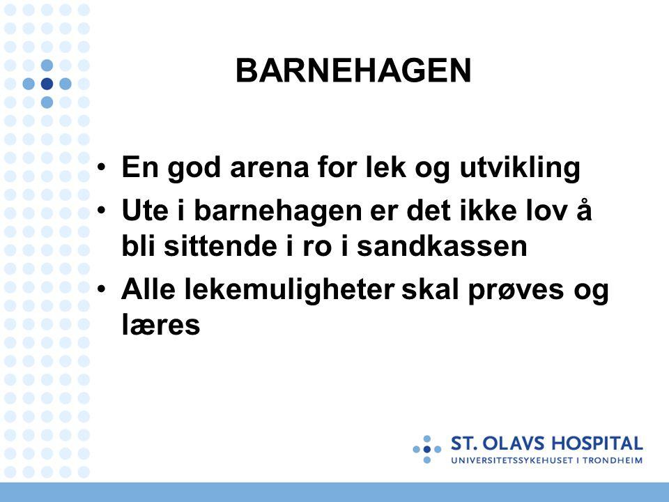 BARNEHAGEN En god arena for lek og utvikling