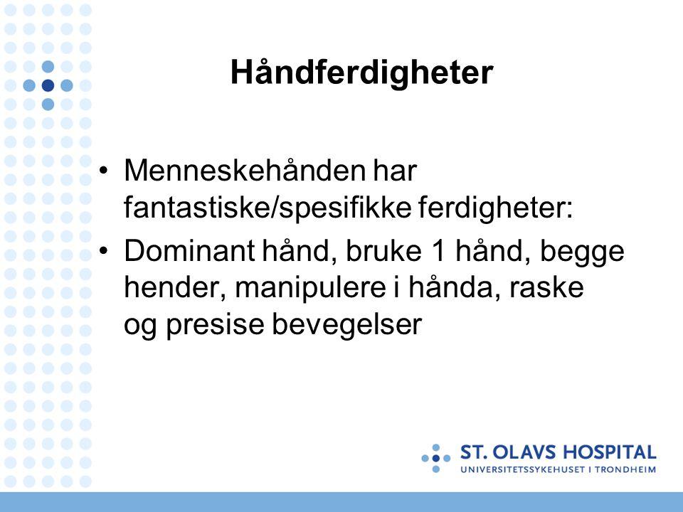 Håndferdigheter Menneskehånden har fantastiske/spesifikke ferdigheter: