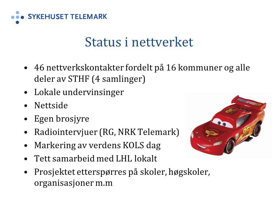 Status i nettverket 46 nettverkskontakter fordelt på 16 kommuner og alle deler av STHF (4 samlinger)