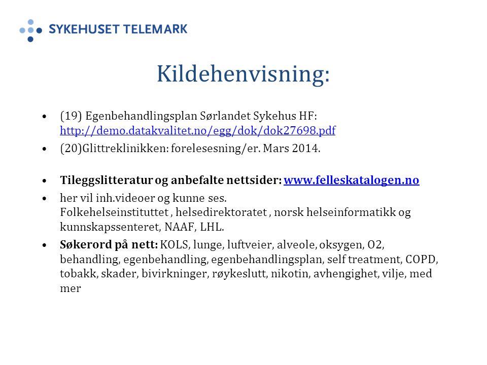 Kildehenvisning: (19) Egenbehandlingsplan Sørlandet Sykehus HF: http://demo.datakvalitet.no/egg/dok/dok27698.pdf.