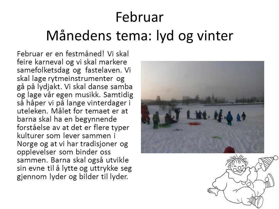 Februar Månedens tema: lyd og vinter