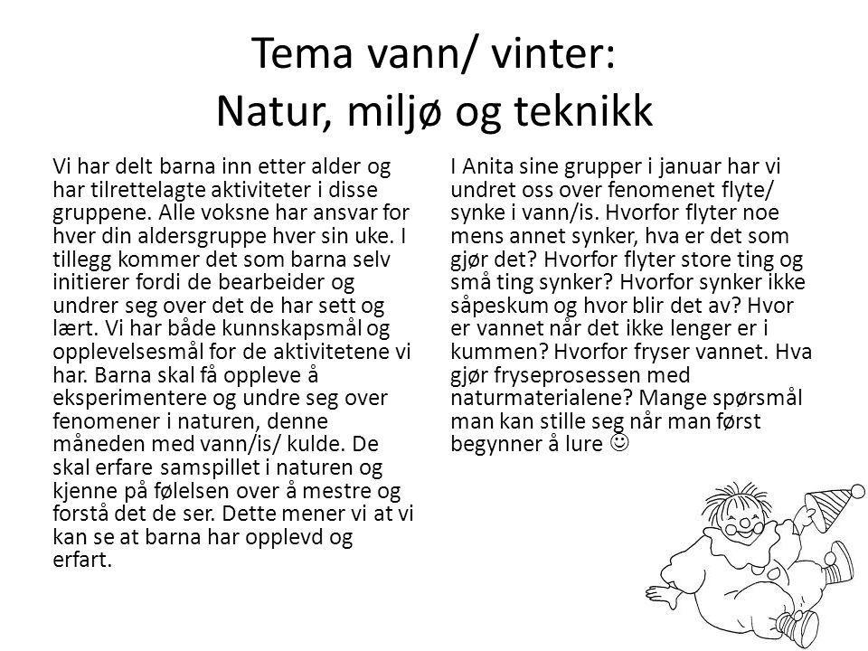 Tema vann/ vinter: Natur, miljø og teknikk