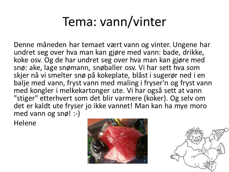 Tema: vann/vinter
