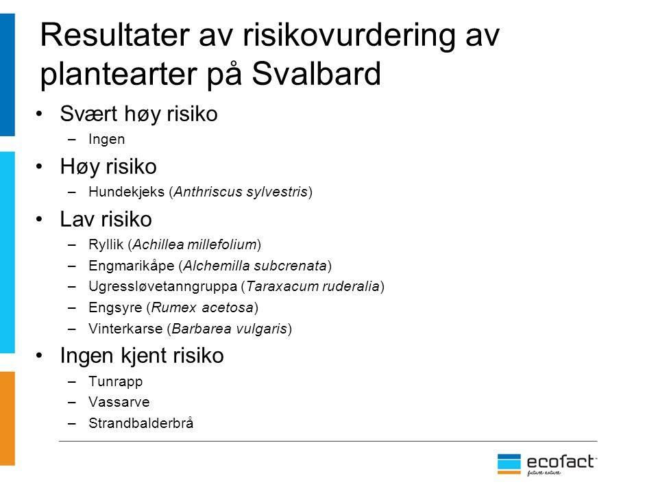 Resultater av risikovurdering av plantearter på Svalbard