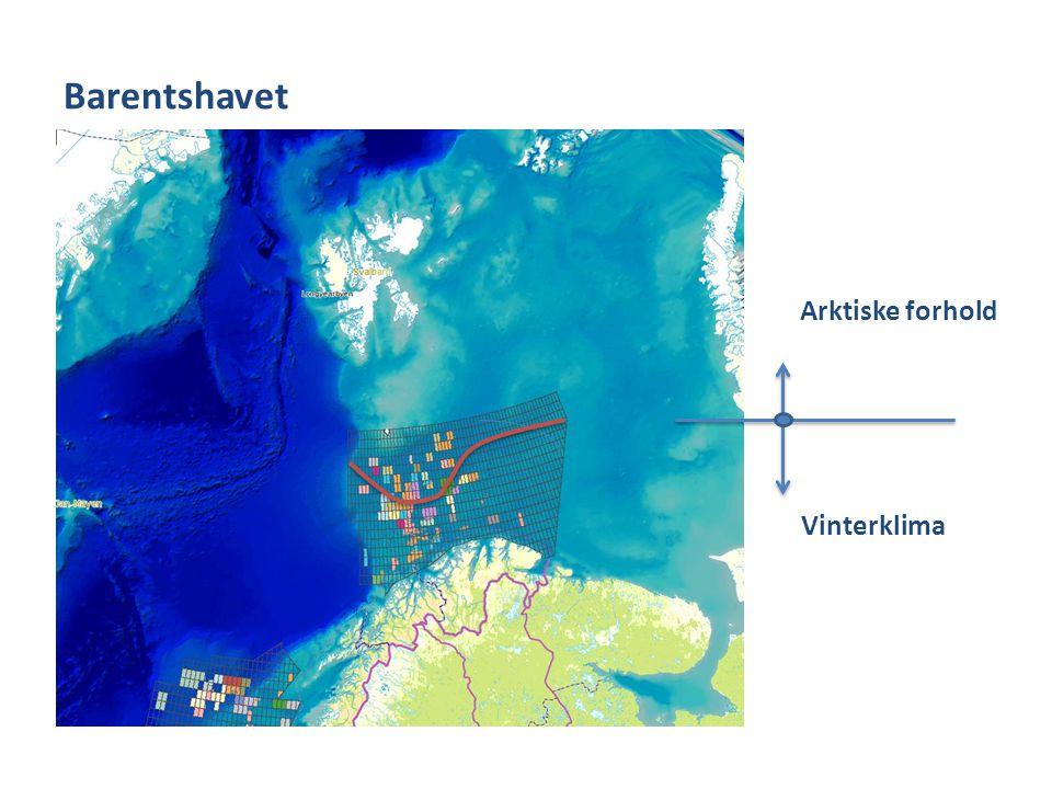 Barentshavet Arktiske forhold Vinterklima