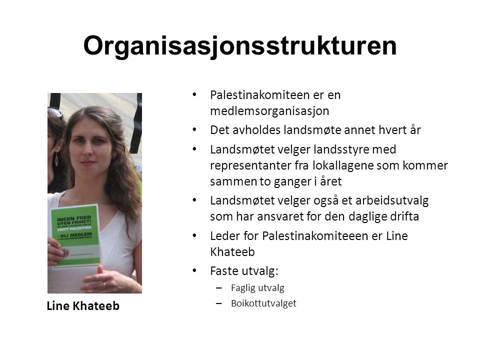 Organisasjonsstrukturen