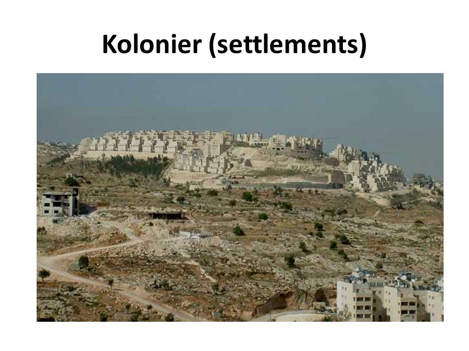 Kolonier (settlements)