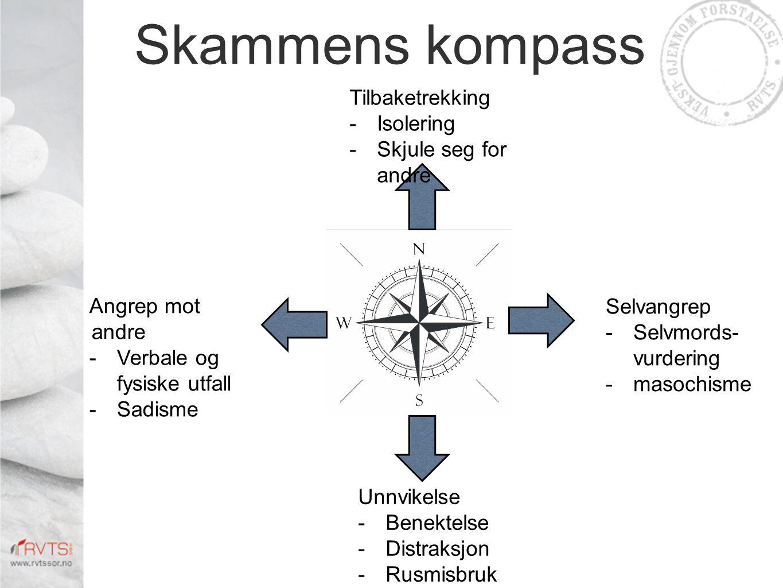 Skammens kompass Tilbaketrekking Isolering Skjule seg for andre