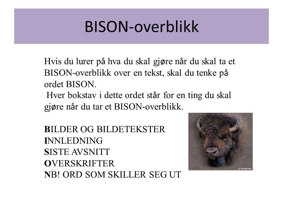Hvis du lurer på hva du skal gjøre når du skal ta et BISON-overblikk over en tekst, skal du tenke på ordet BISON.