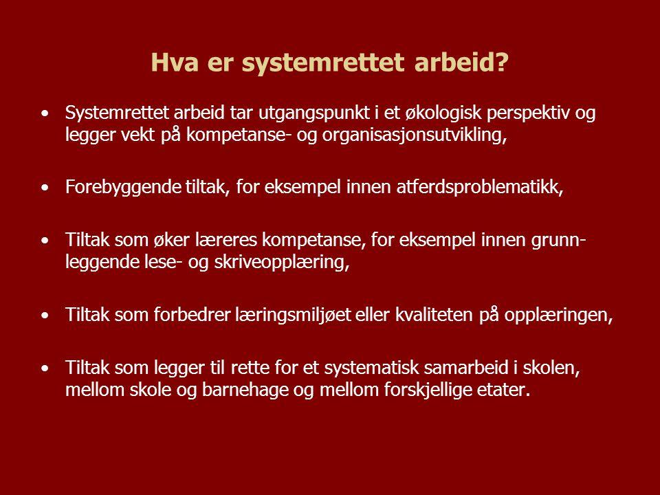 Hva er systemrettet arbeid