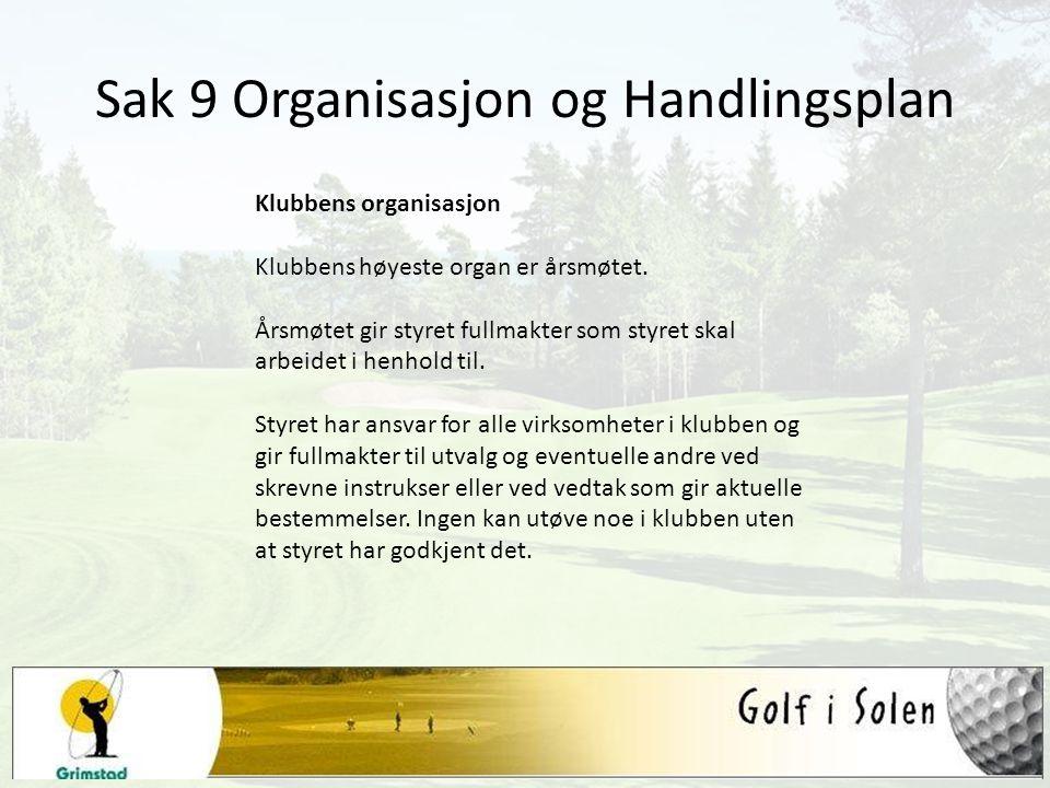Sak 9 Organisasjon og Handlingsplan