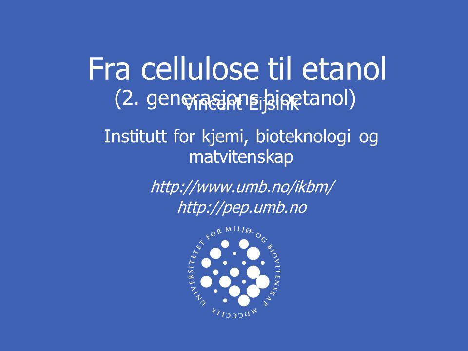 Fra cellulose til etanol (2. generasjons bioetanol)