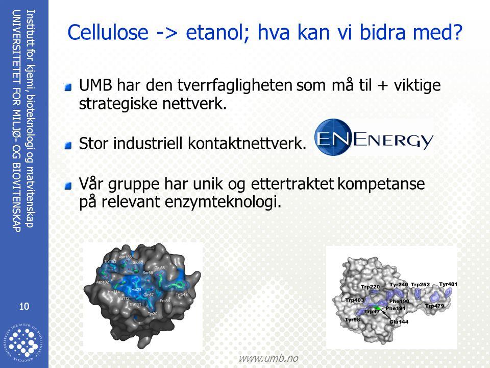 Cellulose -> etanol; hva kan vi bidra med