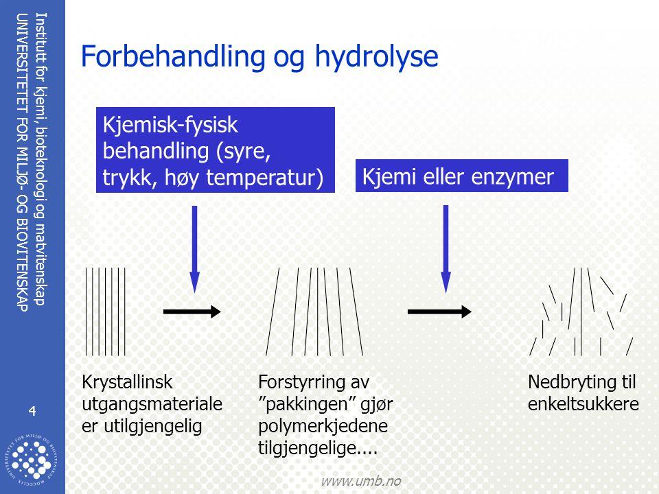 Forbehandling og hydrolyse