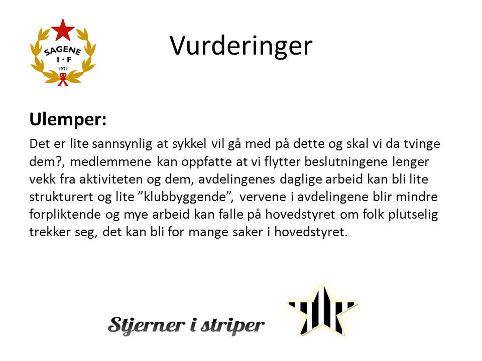 Vurderinger Ulemper: