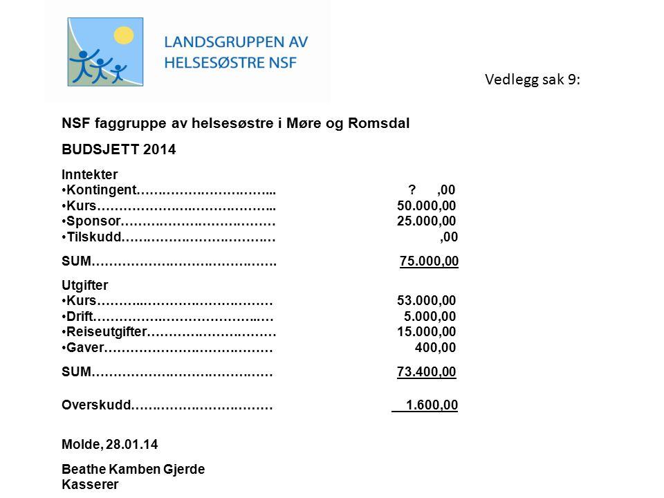 Vedlegg sak 9: NSF faggruppe av helsesøstre i Møre og Romsdal