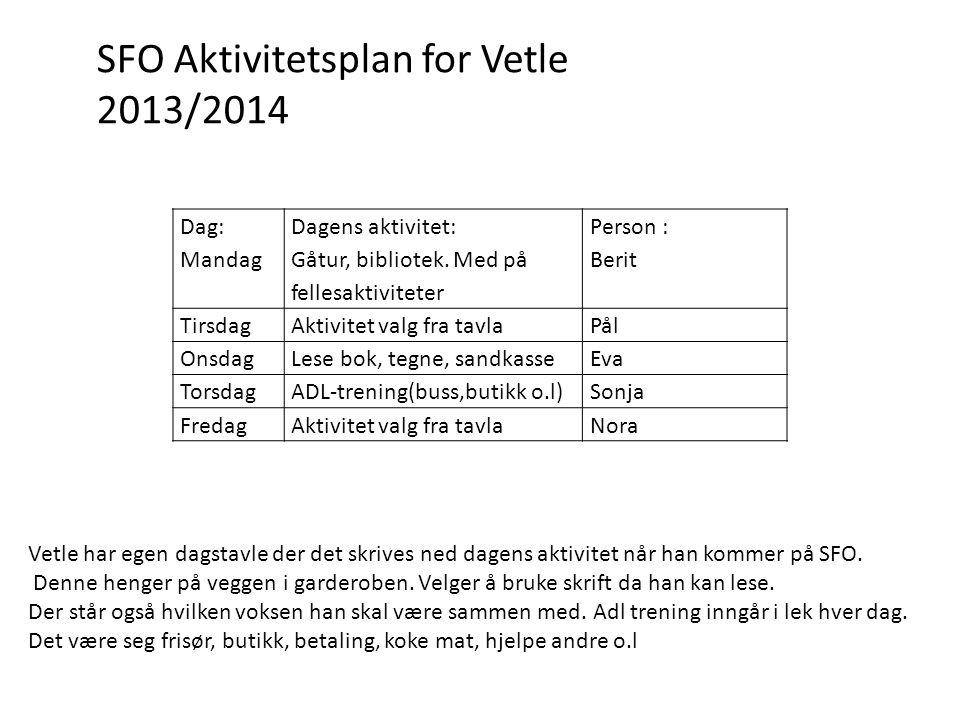 SFO Aktivitetsplan for Vetle 2013/2014