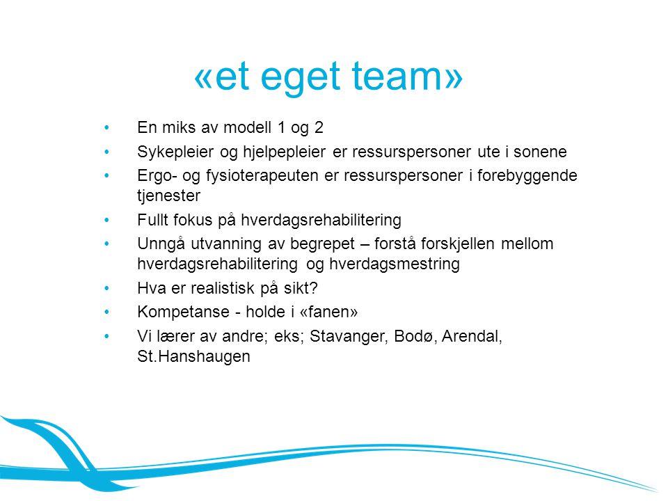 «et eget team» En miks av modell 1 og 2