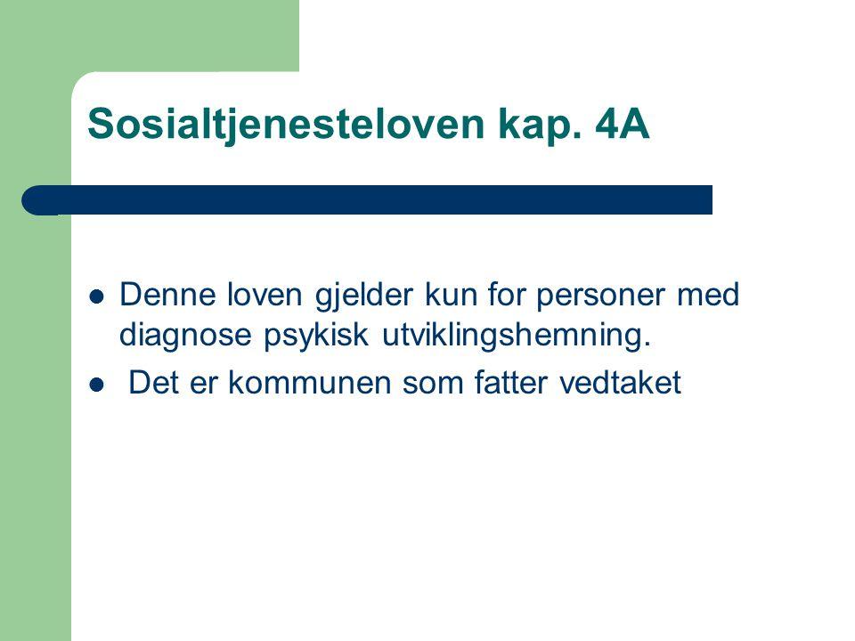 Sosialtjenesteloven kap. 4A