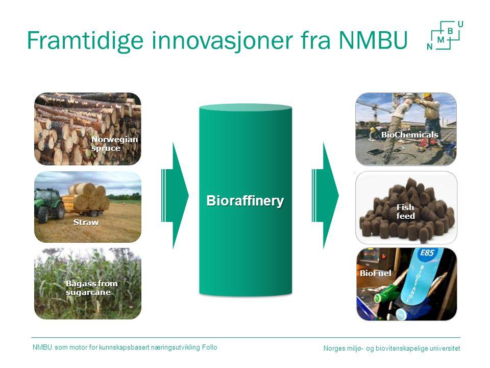 Framtidige innovasjoner fra NMBU