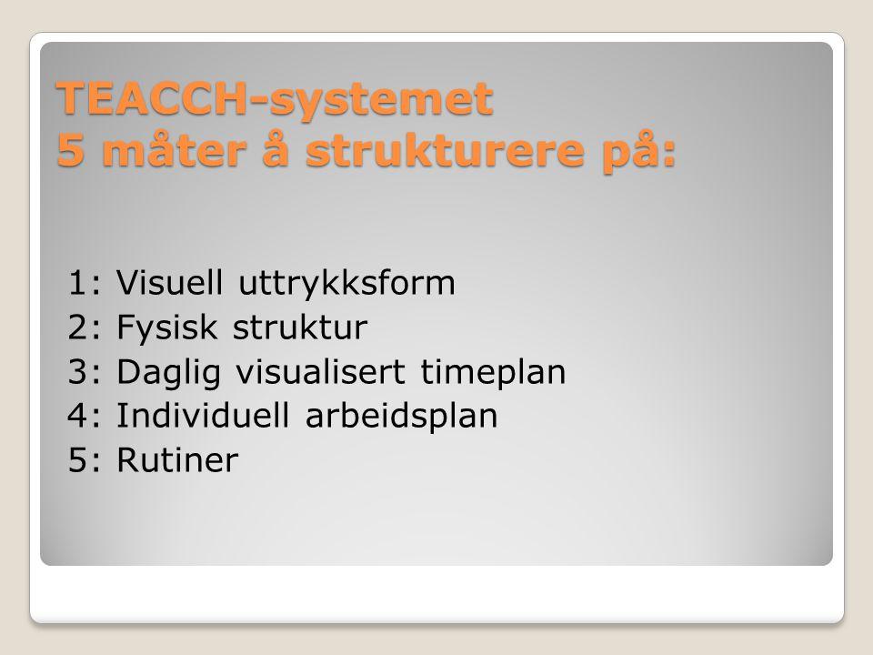 TEACCH-systemet 5 måter å strukturere på: