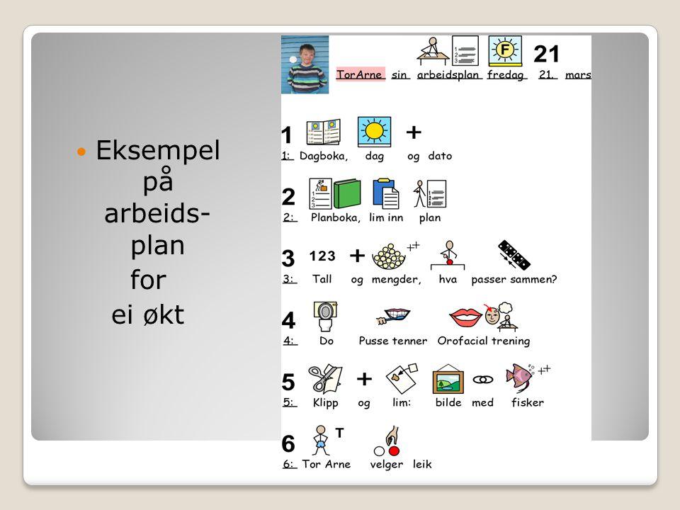 Eksempel på arbeids- plan