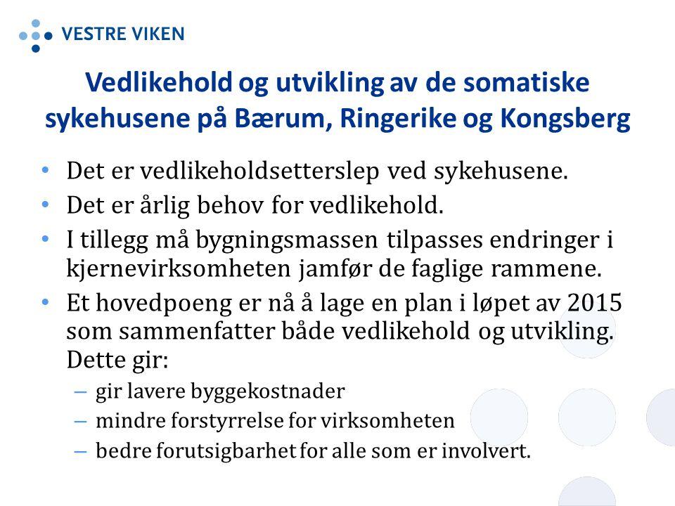 Vedlikehold og utvikling av de somatiske sykehusene på Bærum, Ringerike og Kongsberg