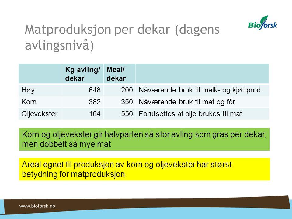 Matproduksjon per dekar (dagens avlingsnivå)