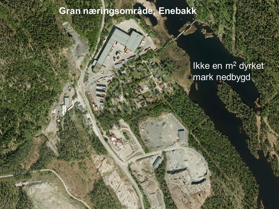 Gran næringsområde, Enebakk