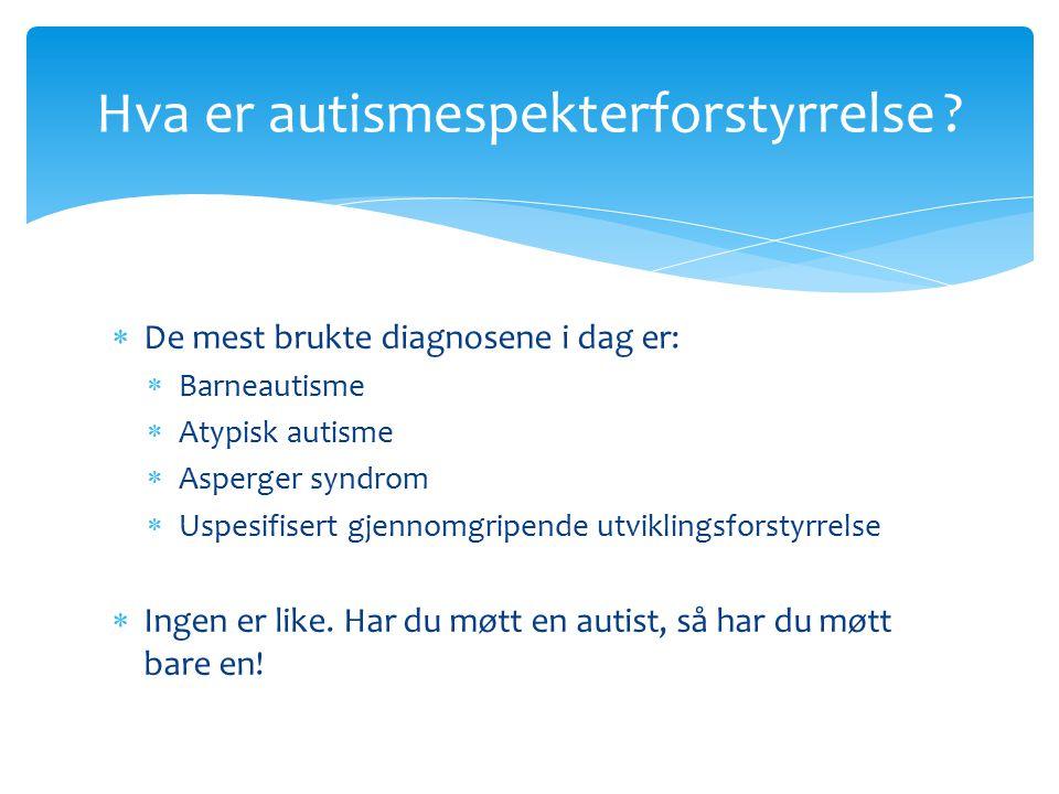 Hva er autismespekterforstyrrelse