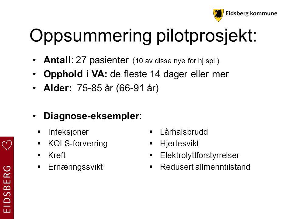 Oppsummering pilotprosjekt: