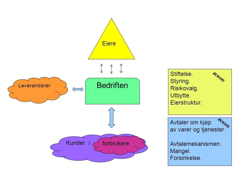 Bedriften Eiere Stiftelse. Styring. Risikovalg. Utbytte. Eierstruktur.