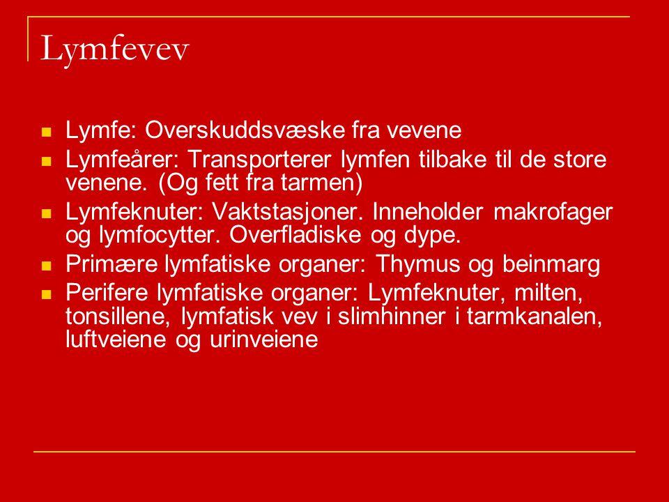 Lymfevev Lymfe: Overskuddsvæske fra vevene