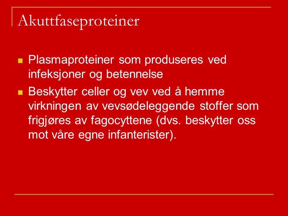Akuttfaseproteiner Plasmaproteiner som produseres ved infeksjoner og betennelse.