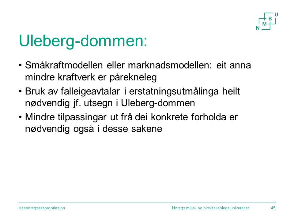 Uleberg-dommen: Småkraftmodellen eller marknadsmodellen: eit anna mindre kraftverk er pårekneleg.